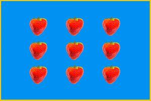 Erdbeeren-002n