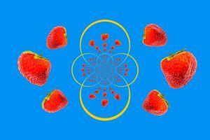 Erdbeeren-002o