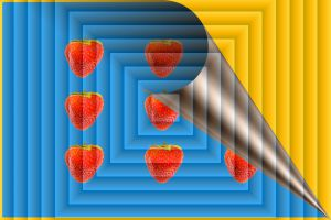 Erdbeeren-002x