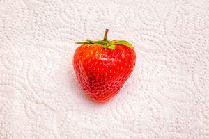 Erdbeeren-003-Galerie