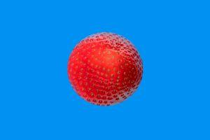 Erdbeeren-003-TT1