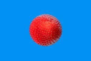 Erdbeeren-003b-Ebene
