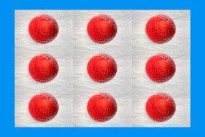 Erdbeeren-004a-Galerie