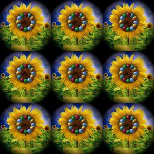 Flowers-SerieS1-Bild13a