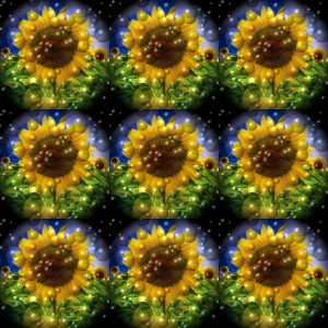 Flowers-SerieS1-Bild14a