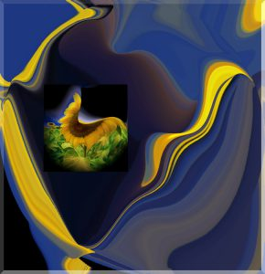 Flowers-SerieS1-Bild33