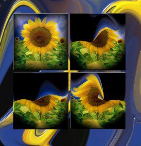 Flowers-SerieS1-Bild47-Objekt
