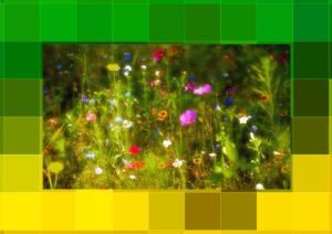 4046-Excellent-Kunst2-Rahmen-xxl-2