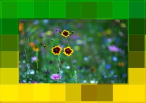 4046-Excellent-Kunst2-Rahmenxxl