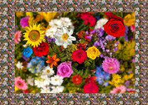 026-Flowers-SerieB1-So8