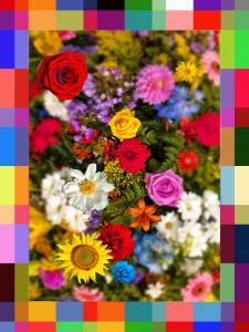 040-Flowers004-TT2-60X80Art