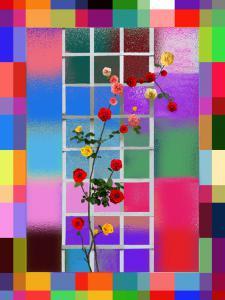 041-Rosen002a-Toskana-Villa13-60X80-Art