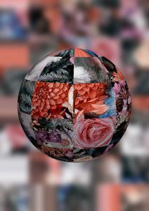 Dame13-Flowers-SerieB1-So24