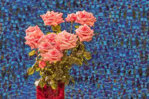 Rosen050-Flowers-SerieR9-X