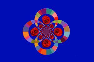 Rosen084-Serie R-Bild 8a
