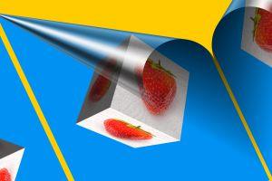002-Erdbeeren-Art