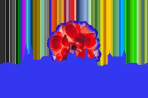 Layout01g-Noris002-Scherenschnitt