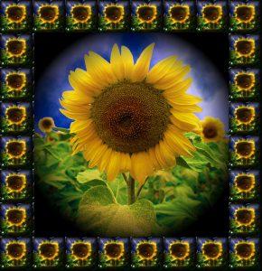 Glasobjekte-FlowersS1-Sonne1a