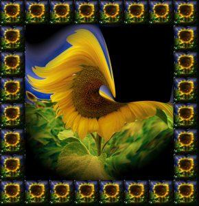 Glasobjekte-FlowersS1-Sonne2a