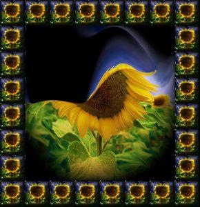 Glasobjekte-FlowersS1-Sonne3a