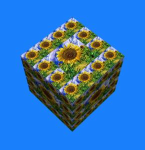 Flowers019-Sonne14