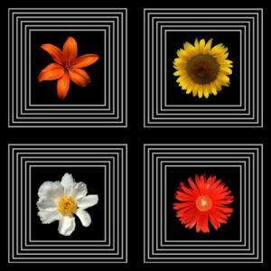 Fliesen011b-Bild015b-Flower Power 3