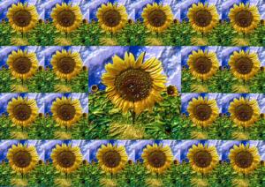 Fliesen040b-Sonne14-Flowers-SerieS4-Art