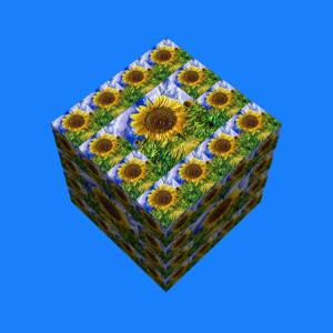 Fliesen040e-Sonne14c-Flowers-SerieS4-Art