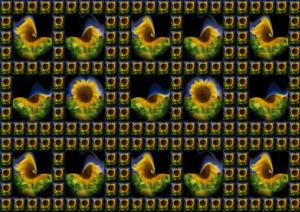 Fliesen041a-Fliesen041f-3D-FlowersS1-Sonne1-Excellent