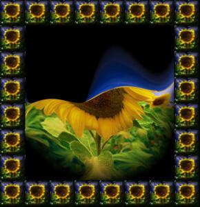 Fliesen041c-Flowers-Serie S-Bild 6b-Excellent