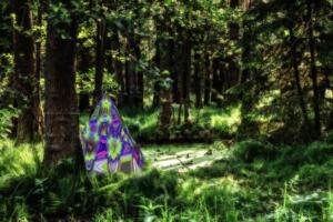 Ausstellung 03-Pop Art im Wald von Nuernberg
