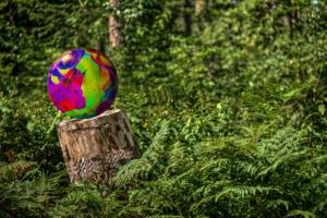 Wald-Frühjahr09-Art