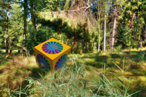 Wald-Sommer05-Excellent
