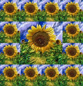 Glasobjekte-FlowersS1-Sonne14p