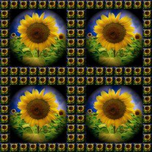 Glasobjekte-FlowersS1-Sonne1v