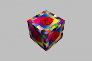 Quadrat21