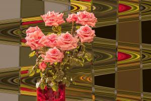 Rose009-7952-7956Neu-Galerie