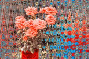 Rose010-7952-7956Neu-Art1d-PhotoStylizer