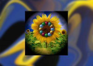 Flowers-SerieS1-Bild71