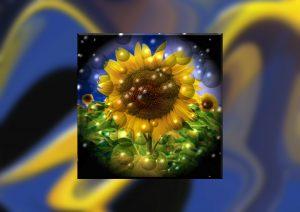 Flowers-SerieS1-Bild72