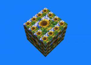Flowers-SerieS4-8