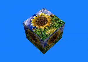 FlowersSerieS4-6