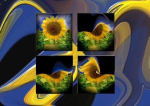 Flowers-SerieS8-Art1