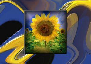 Flowers-SerieS8-Art5
