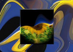 Flowers-SerieS8-Art6
