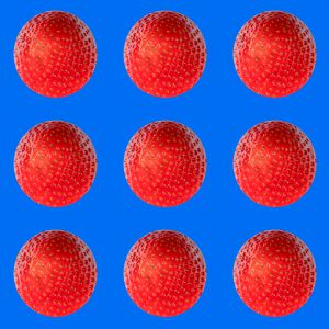 Erdbeeren009