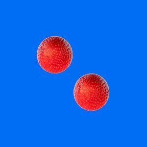 Erdbeeren013