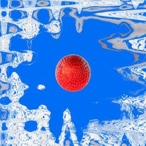 Erdbeeren028