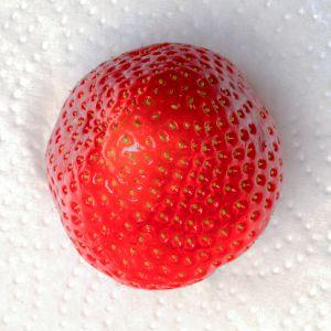 Meine TOP 100-Erdbeeren