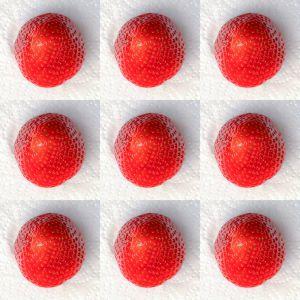 Erdbeeren002